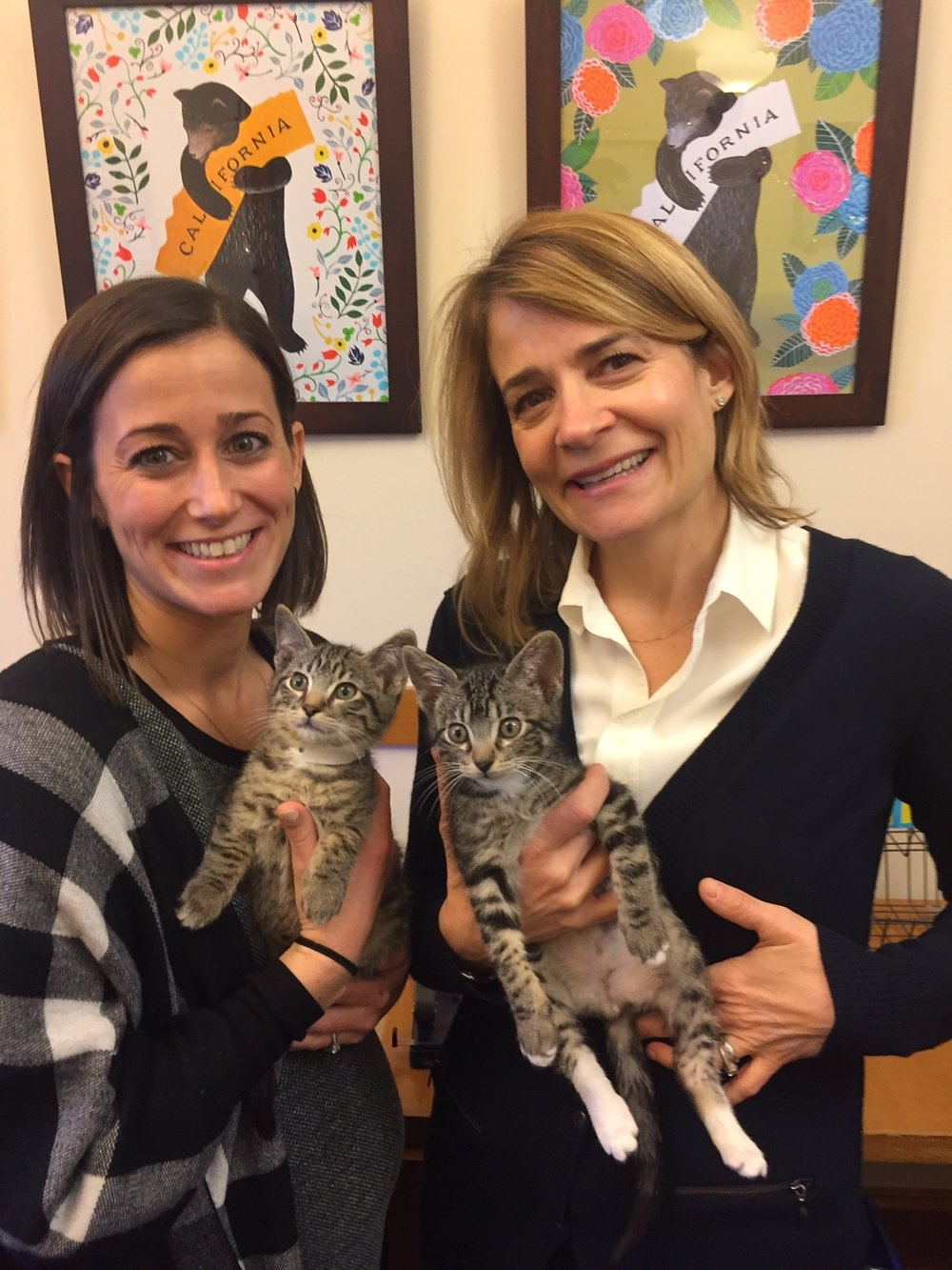"""Nikkie & Sascha celebrating Supervisor Tangs Office """"12 Days of Kittens"""" No we did not bring one home."""