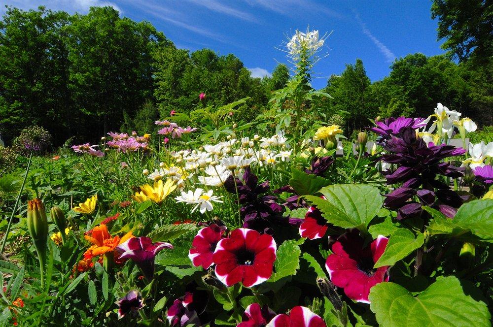 Scope Of Work:  - Custom Design  - Flower Garden Installation  - Electric Fence Installation