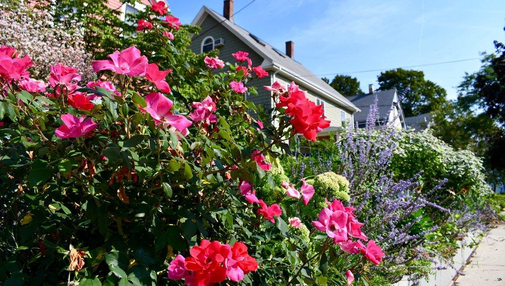 Scope Of Work:  - Custom Design  - Stone Bed Construction  - Flower Garden Design and Installation  - Drip Line Irrigation