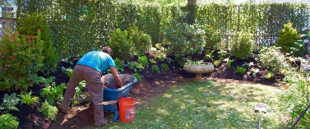 Scope Of Work:   - Pre-Planted Ivy Fence Installation  - Garden Installation