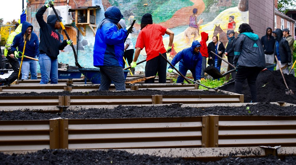 SCOPE OF WORK  - Design/Installation of raised beds for a community garden in Dorchester.   - Management of 25+ volunteers.   - Design and installation of fruit trees, berries, custom arbor, masonry path way, grading, lawn establishment.