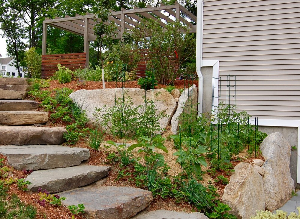Edible Landscaping & Construction