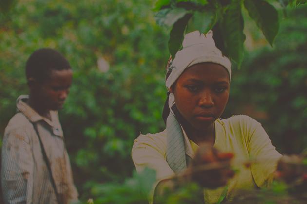 Reports on Child Labor -