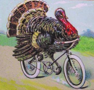 TurkeyOnBike3.jpg