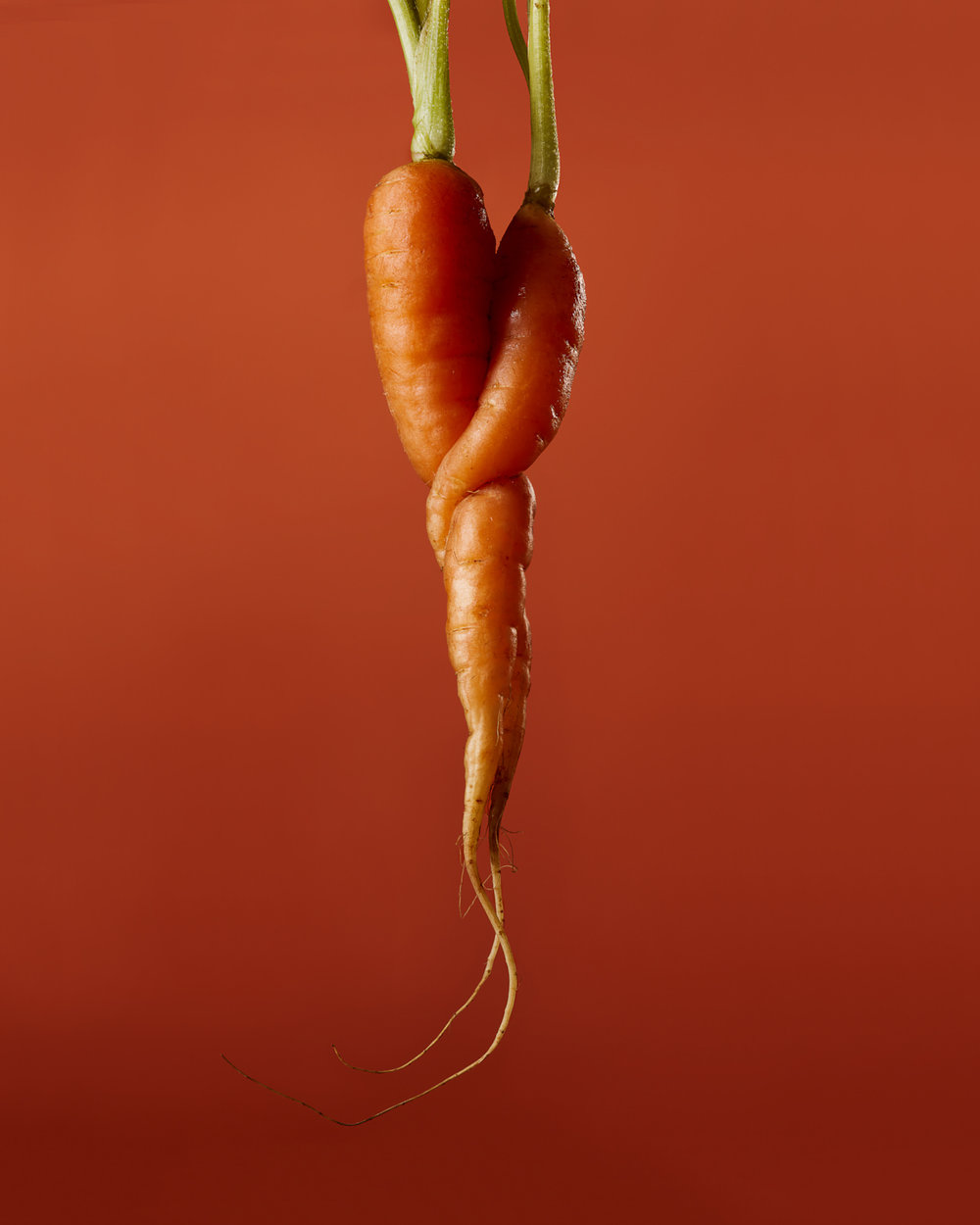 Carrot Food Stylist Judy Kim Photographer Josh Dickinson