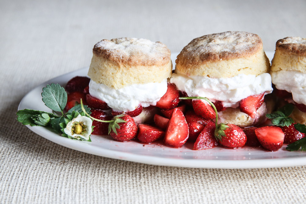 Strawberry Shortcake | James Beard | Food Styling and Photo by Judy Kim