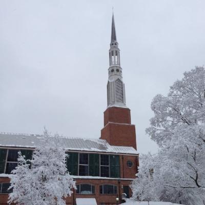 Snowy Vine Street.jpg