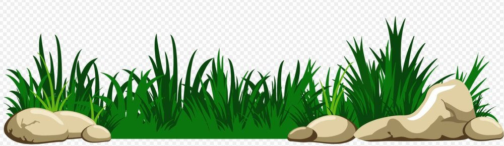 Grass-clipart-transparent-background-image.jpg