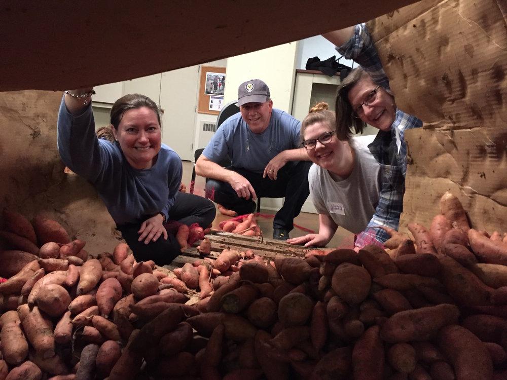 Sweet Potato Drop 2018-0431.JPG