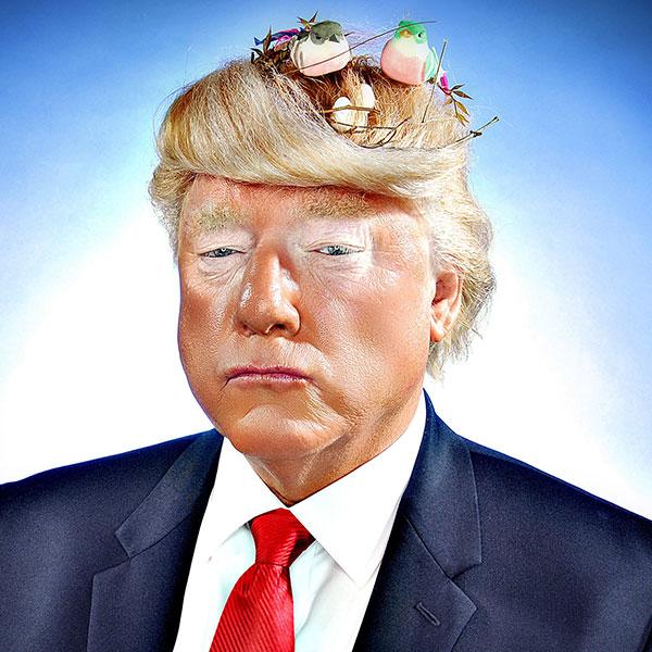 Tim Watters, Donald Trump