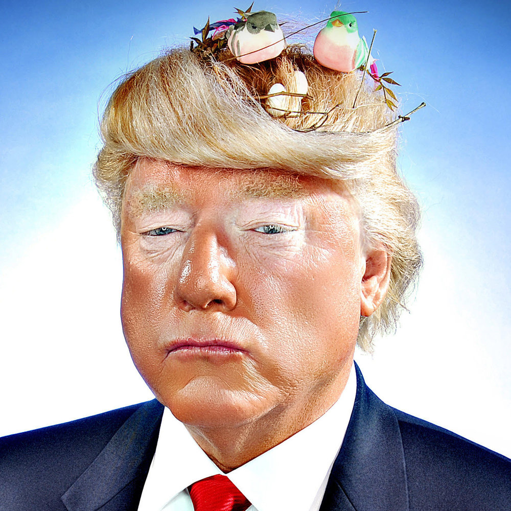 Donald Trump (Tim Watters)