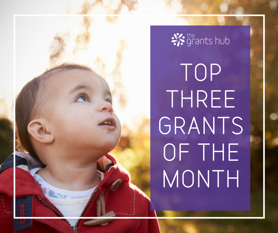 January's Top Three Grants.png