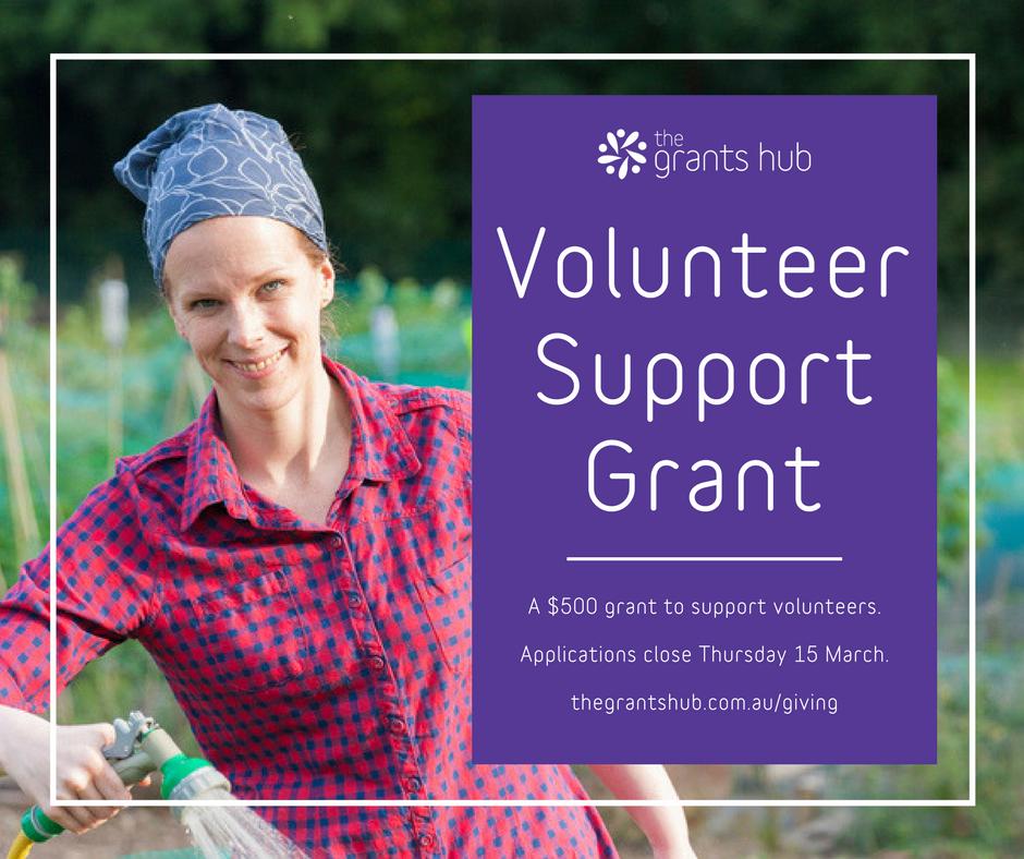 Volunteer Support Grant.png