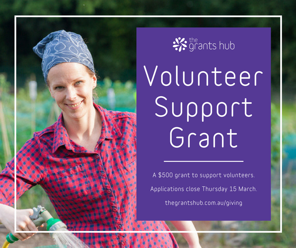 Volunteer Support Grant.png