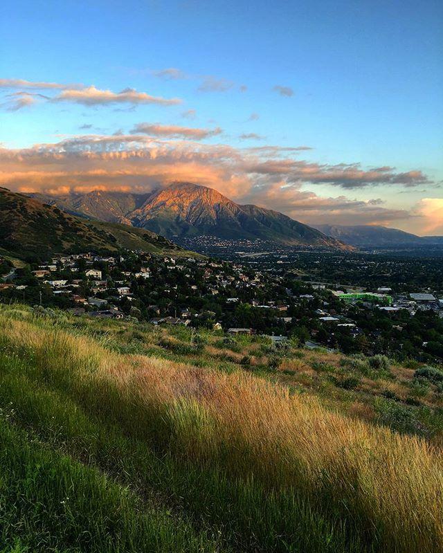 Utah is cool