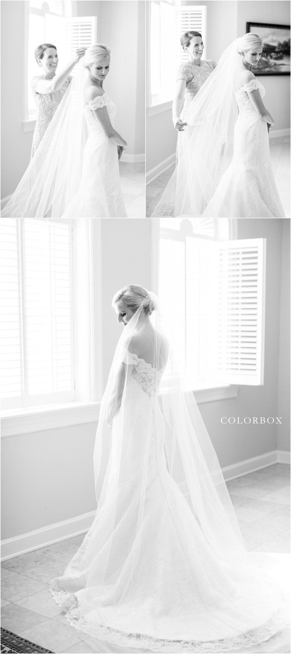 colorboxphotographers_5707.jpg