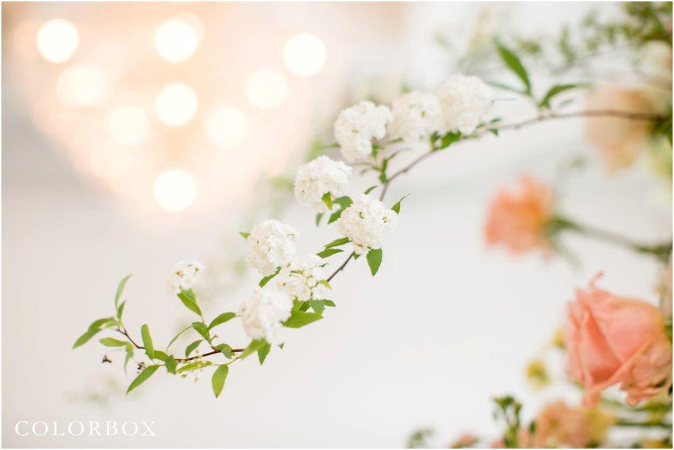 colorboxphotos_1155.jpg