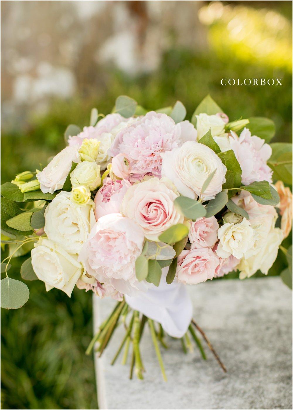 colorboxphotographers_5971.jpg