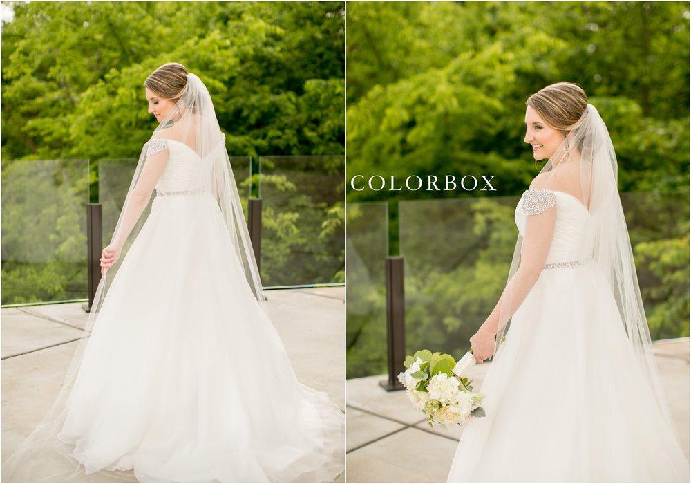 colorboxphotographers_6062.jpg