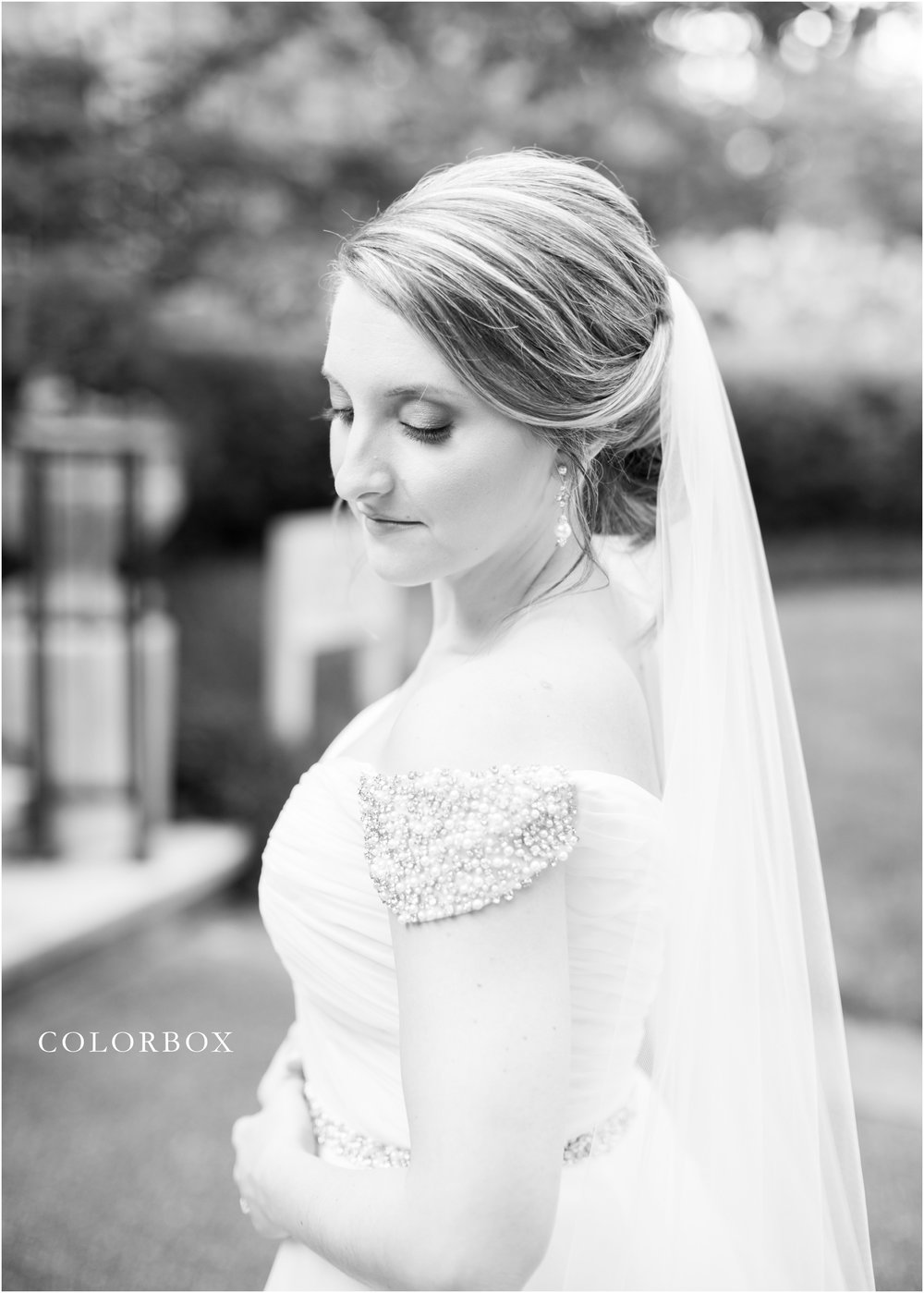 colorboxphotographers_6067.jpg