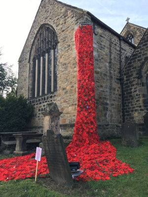 Poppies at Otley