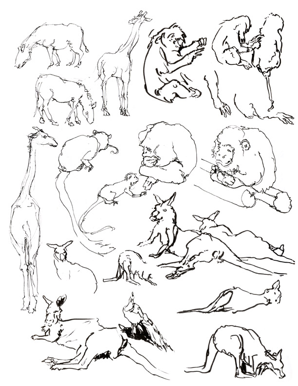 animals01.jpg