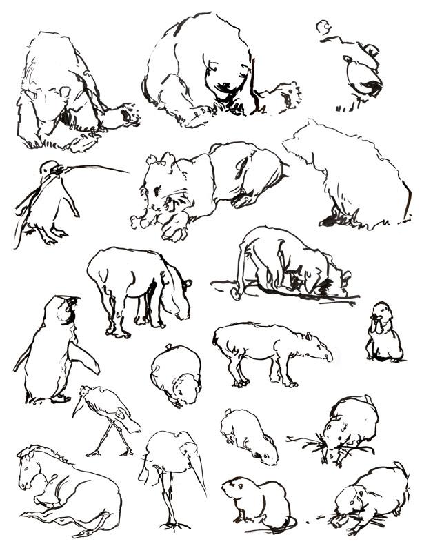 animals02.jpg