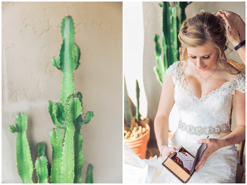 618Arizona Wedding Photographer .jpg