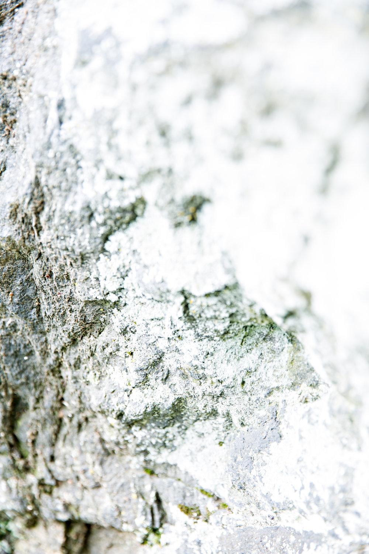 Evidence Found - Stone No. 2
