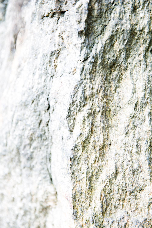 Evidence Found - Stone No. 1
