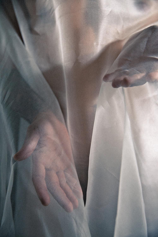 N. Veiled No. 3