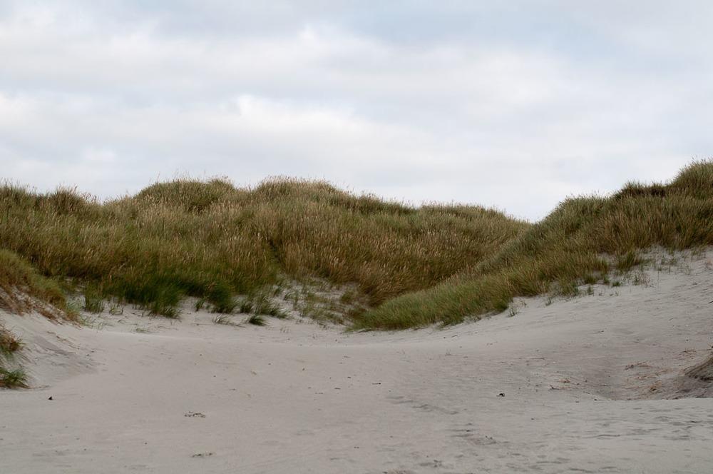 Refsnes Sand Dunes