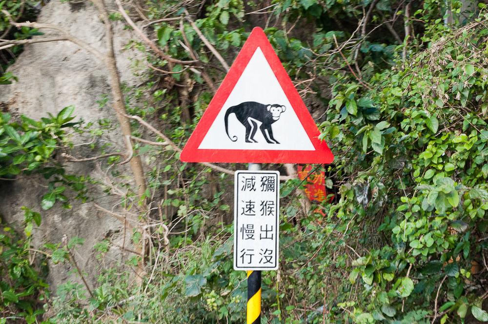 Monkey Mountain Kaohsiung