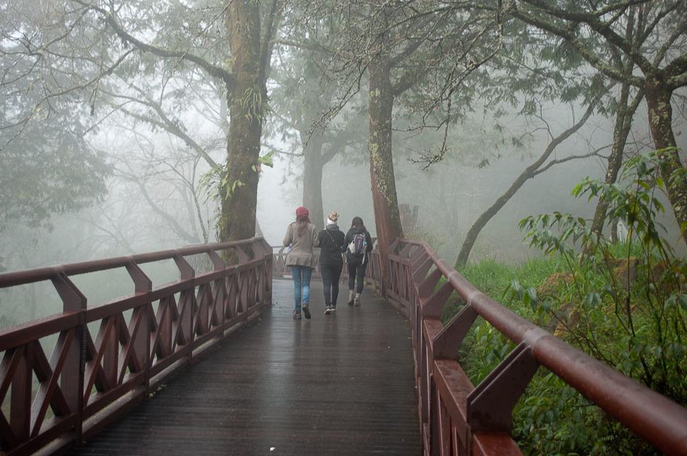 Alishan Taiwan