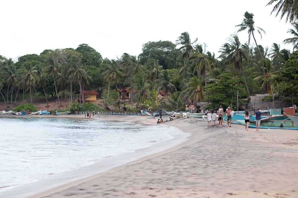 Arugam Bay Surf Beach Main Point Sri Lanka