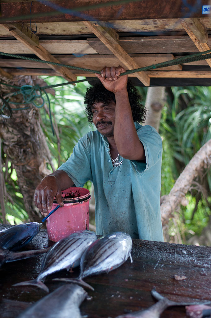 Fish Market Ahangama Sri Lanka