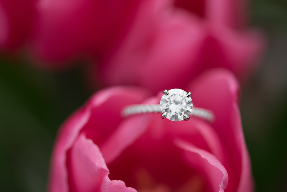 Macro Ring Shot Solitair Diamond Christopher Columbus Park Engagement Boston MA.jpg