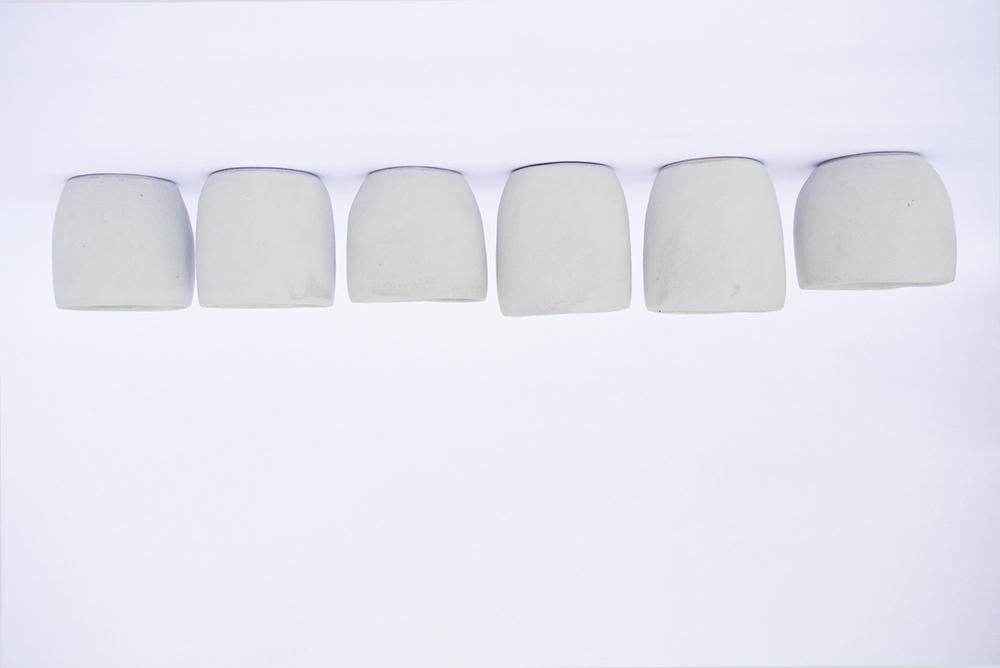 White Cups_P1030947.jpg