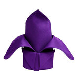 Napkin Hire Purple