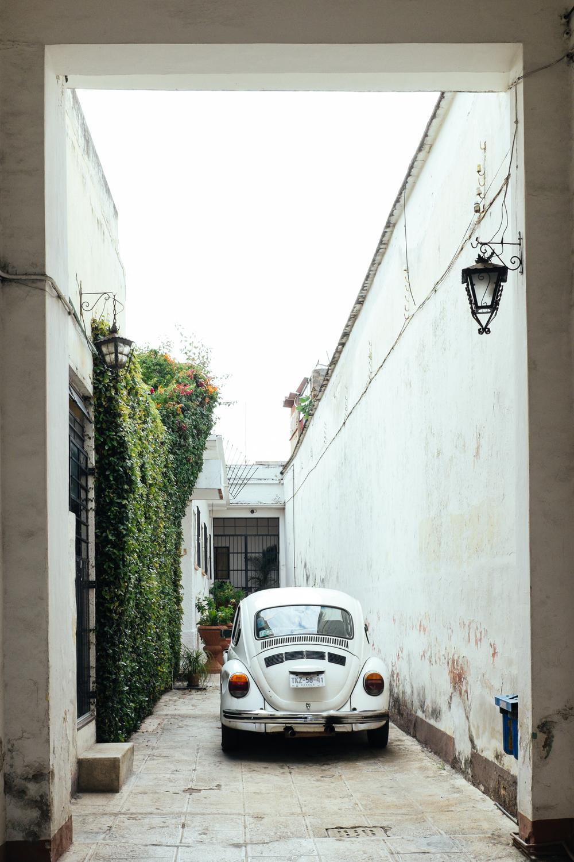 2015 - 08 - Oaxaca-0619.jpg