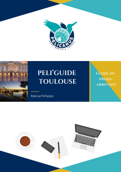 Peliguidetoulouse.png