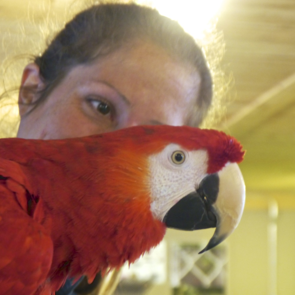 Foster Parrots - Liz with Mary.jpg