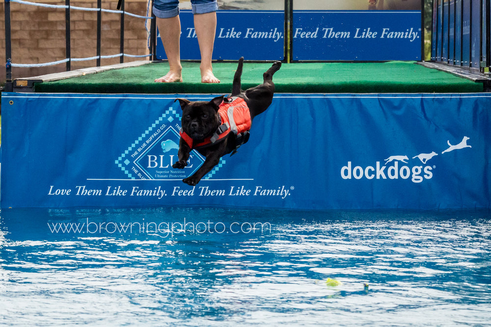 dock-diving-at-polaris-cabela's