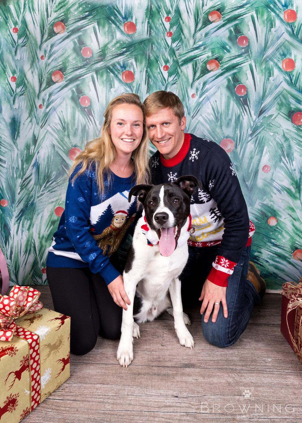 Christmas dogs-1