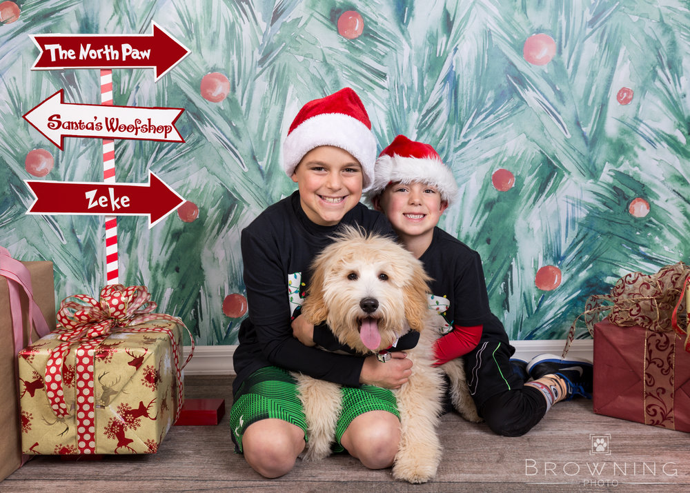 holiday-pet-portraits-with-kids-1