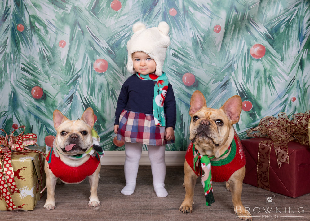 holiday-pet-portraits-with-kids-2