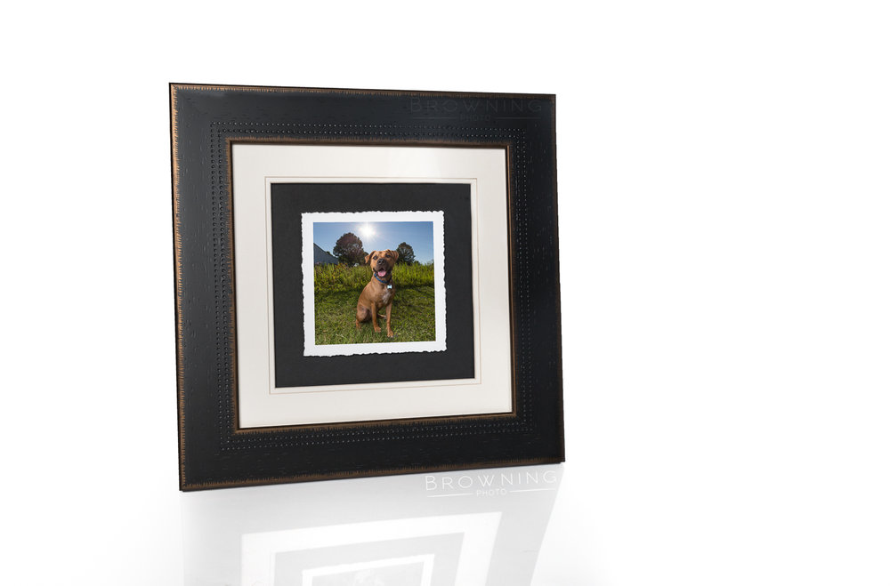 framed dog print