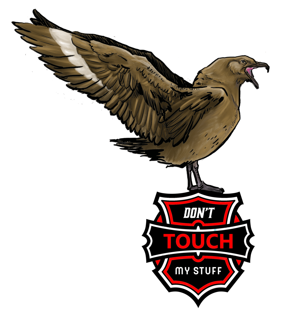 Skua sticker design