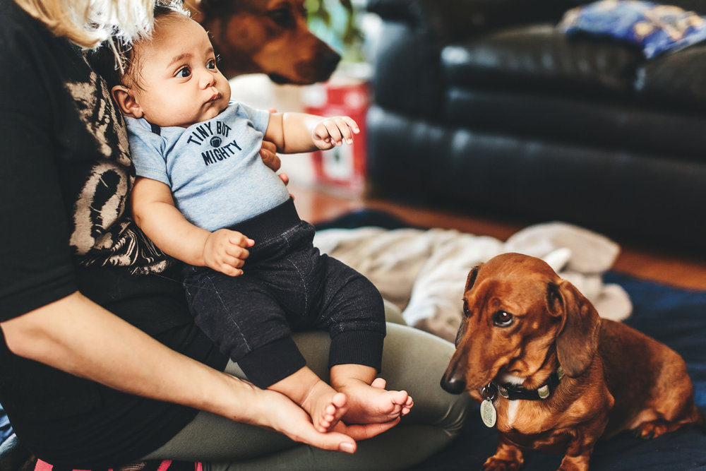 toronto-lifestyle-baby-photographer-2_1.jpg