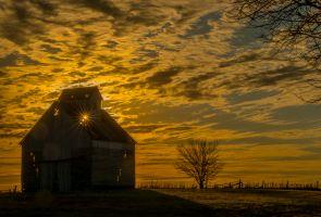 04,DE292,DN,Sunset Siloutte.jpg